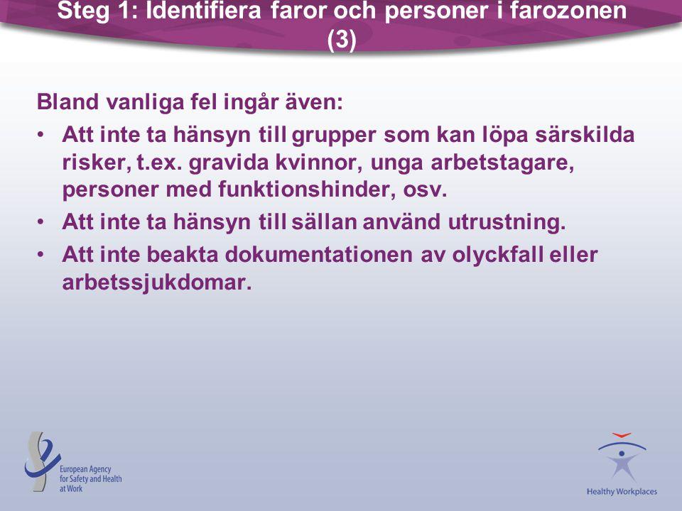 Steg 1: Identifiera faror och personer i farozonen (3)