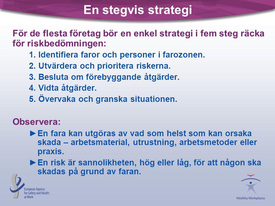 En stegvis strategi För de flesta företag bör en enkel strategi i fem steg räcka för riskbedömningen: