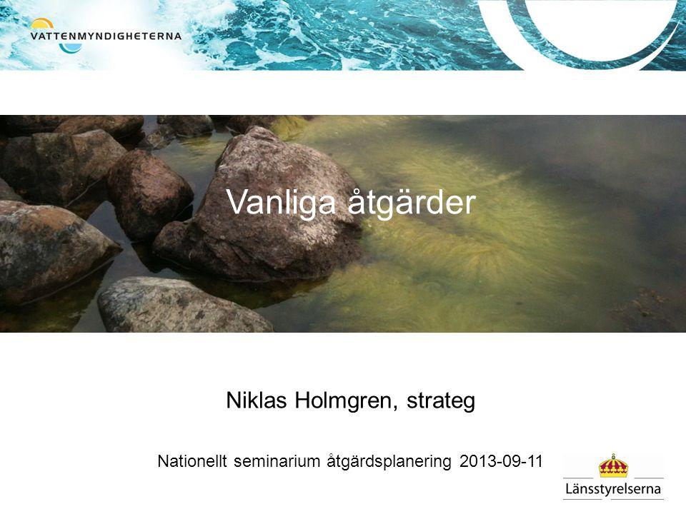 Vanliga åtgärder Niklas Holmgren, strateg