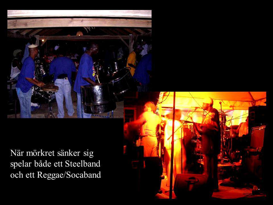 När mörkret sänker sig spelar både ett Steelband och ett Reggae/Socaband
