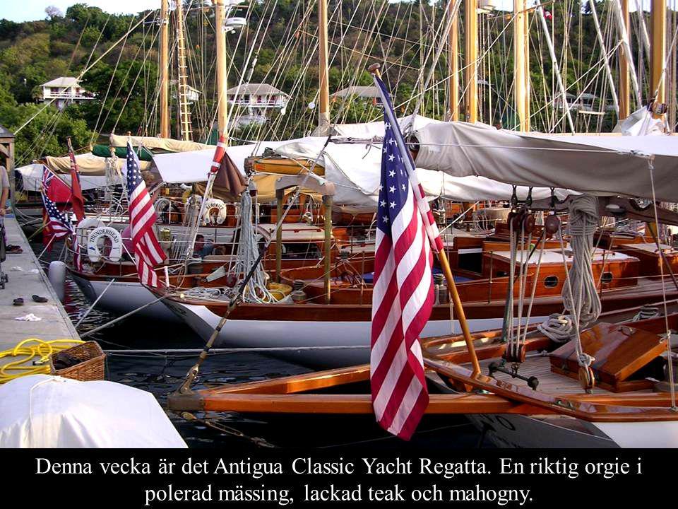 Denna vecka är det Antigua Classic Yacht Regatta