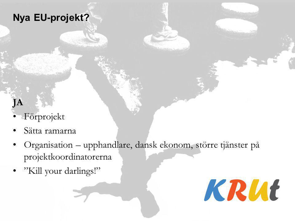 Nya EU-projekt JA. Förprojekt. Sätta ramarna. Organisation – upphandlare, dansk ekonom, större tjänster på projektkoordinatorerna.