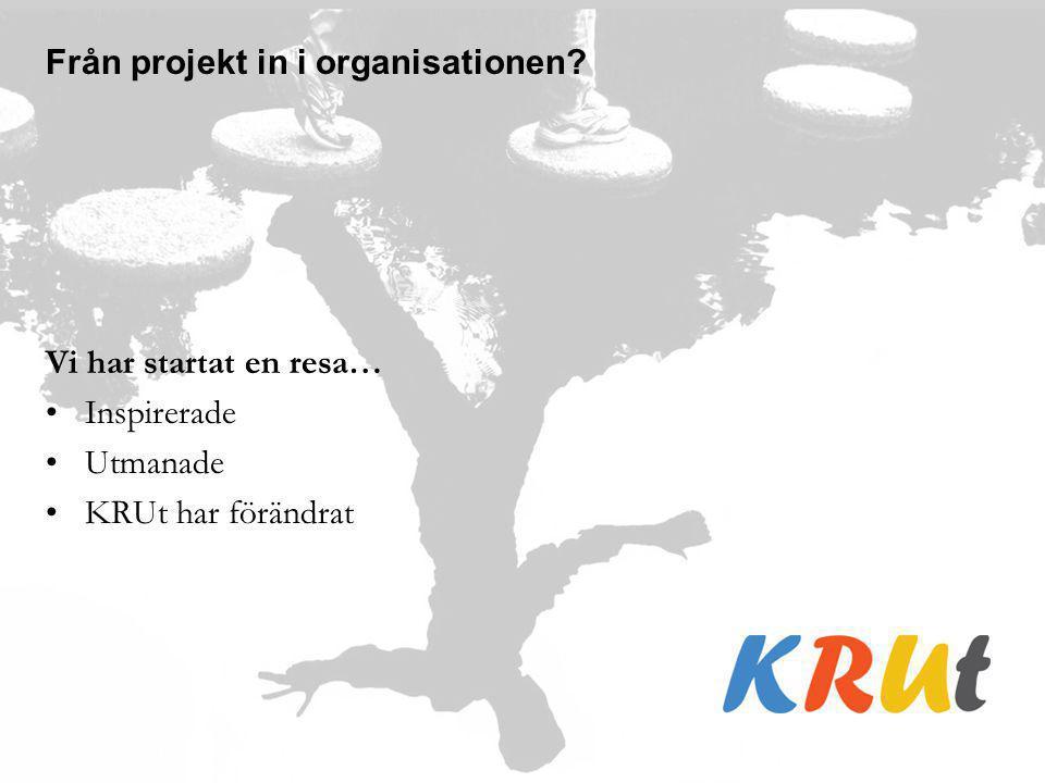 Från projekt in i organisationen