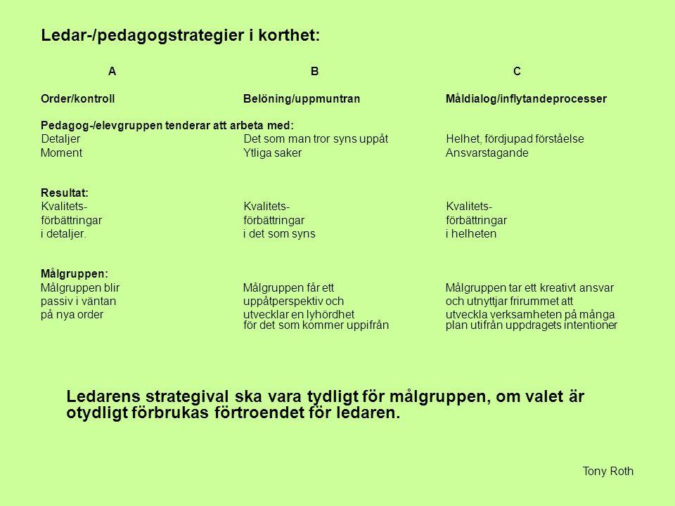 Ledar-/pedagogstrategier i korthet: