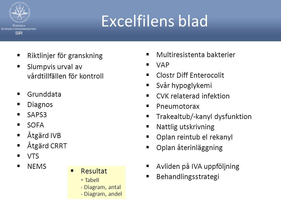 Excelfilens blad Riktlinjer för granskning