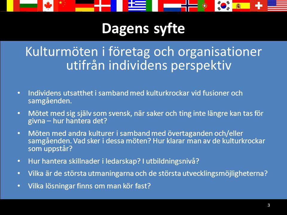 Kulturmöten i företag och organisationer utifrån individens perspektiv
