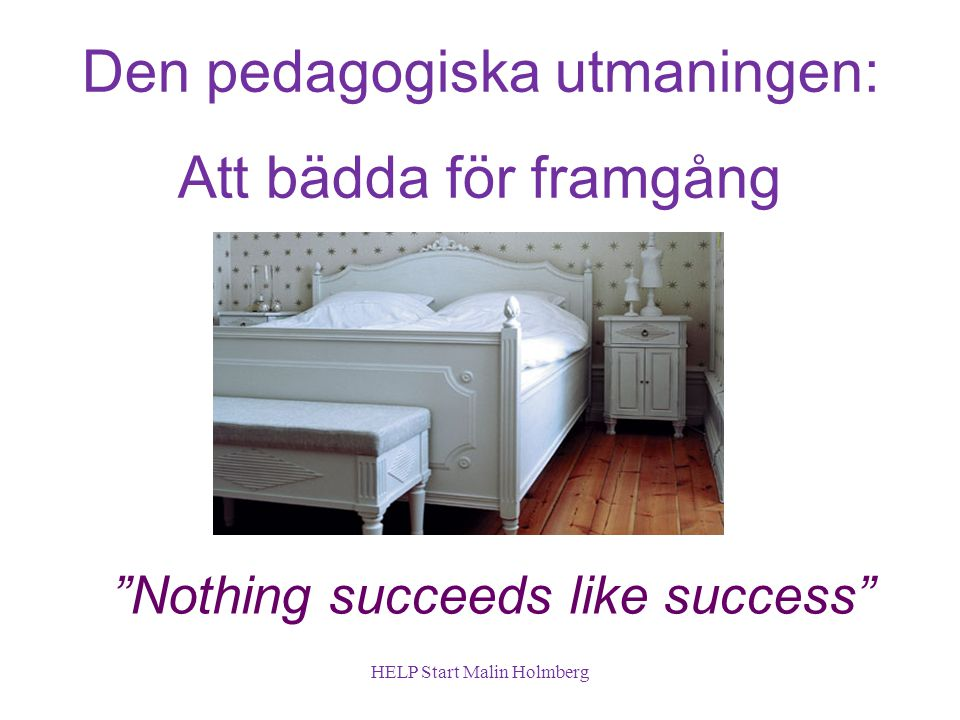 Den pedagogiska utmaningen: Att bädda för framgång