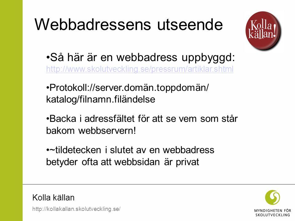 Webbadressens utseende