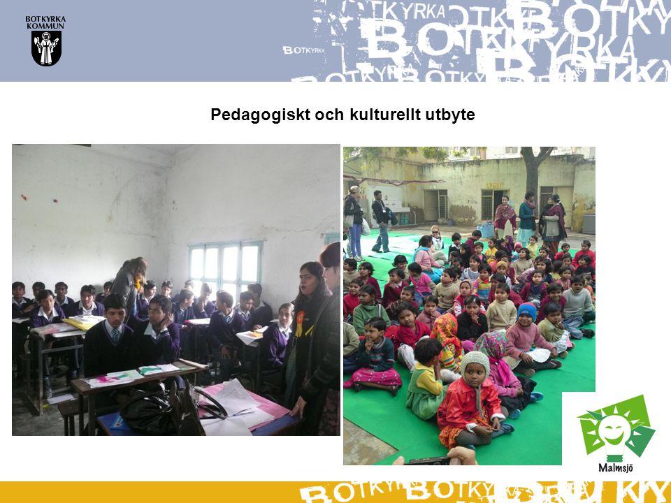 Pedagogiskt och kulturellt utbyte