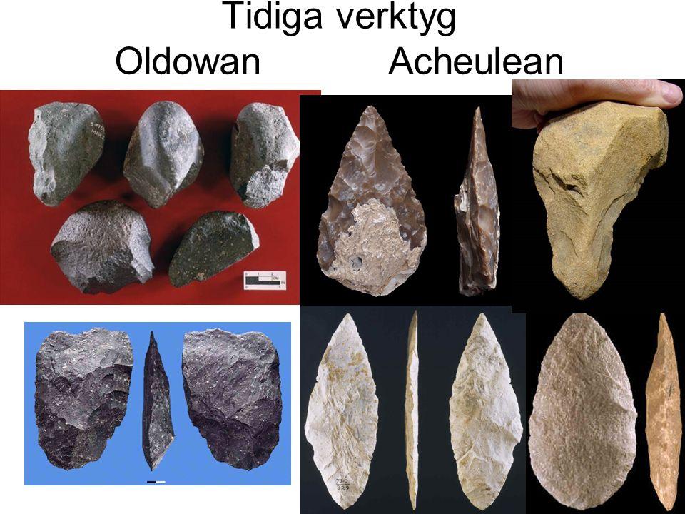 Tidiga verktyg Oldowan Acheulean