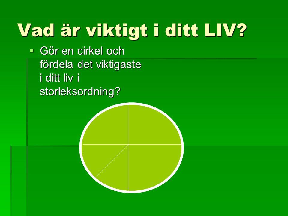 Vad är viktigt i ditt LIV