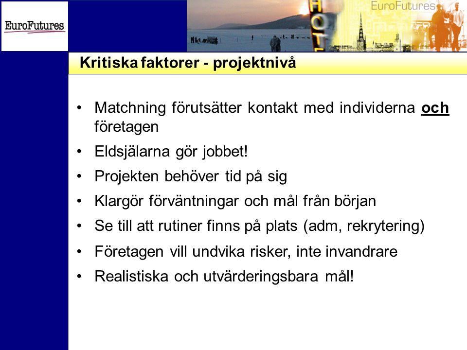 Kritiska faktorer - projektnivå