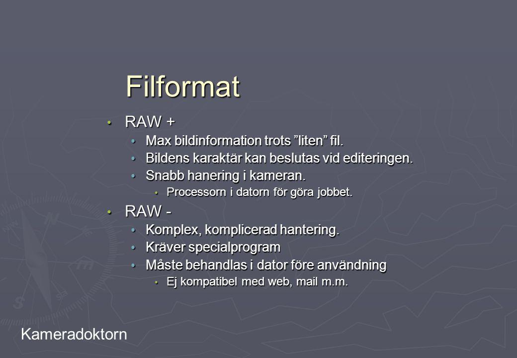 Filformat RAW + RAW - Max bildinformation trots liten fil.