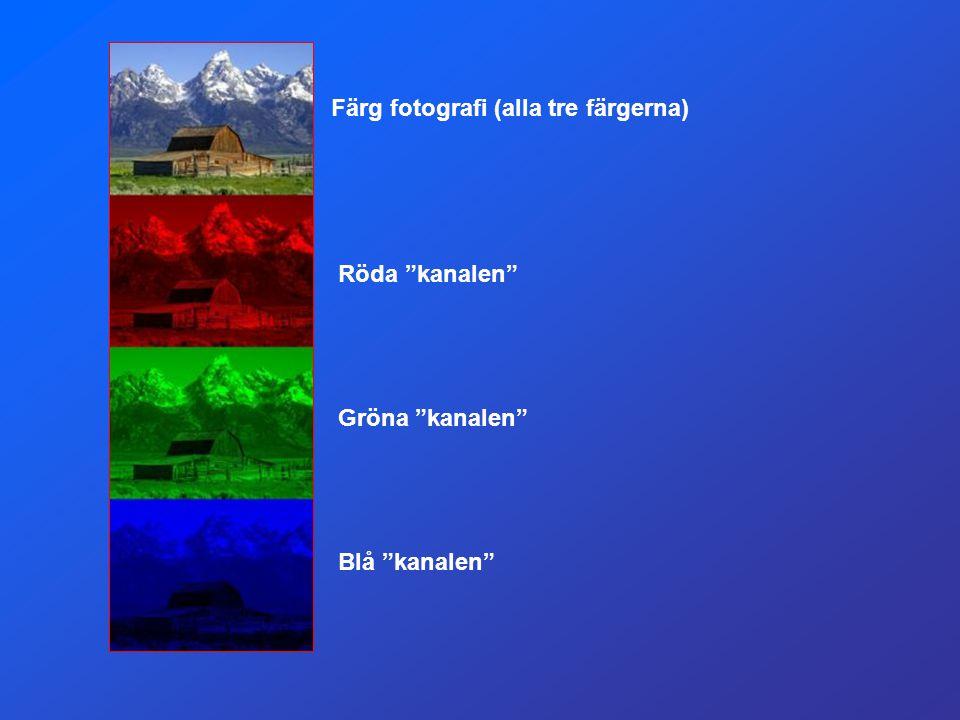 Färg fotografi (alla tre färgerna)