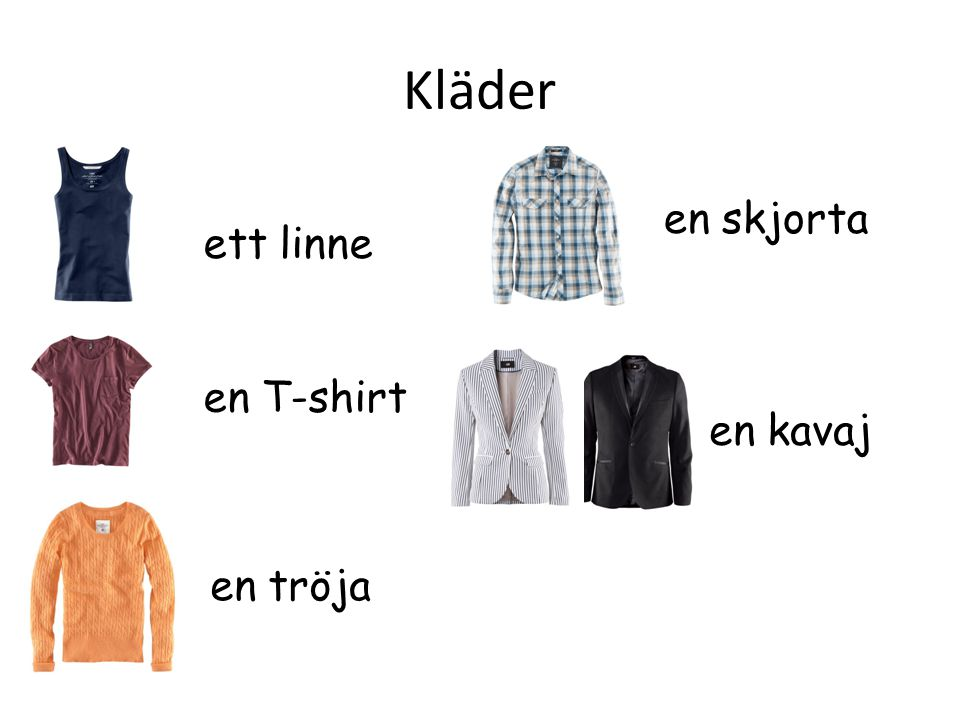 Kläder en skjorta ett linne en T-shirt en kavaj en tröja
