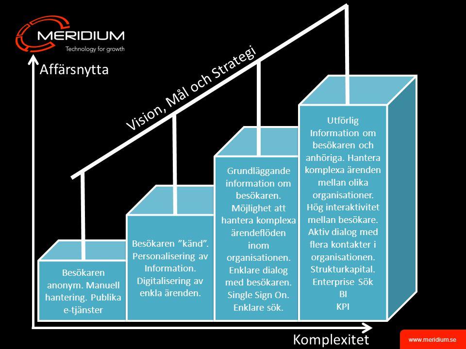 Vision, Mål och Strategi