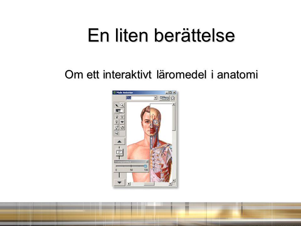 Om ett interaktivt läromedel i anatomi