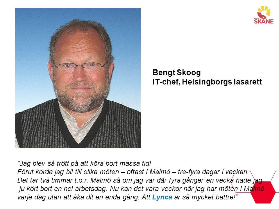 IT-chef, Helsingborgs lasarett