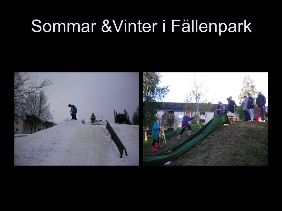 Sommar &Vinter i Fällenpark