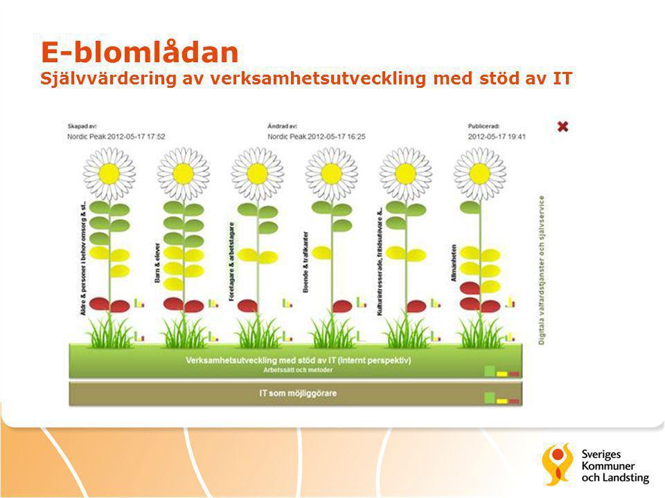 E-blomlådan Självvärdering av verksamhetsutveckling med stöd av IT