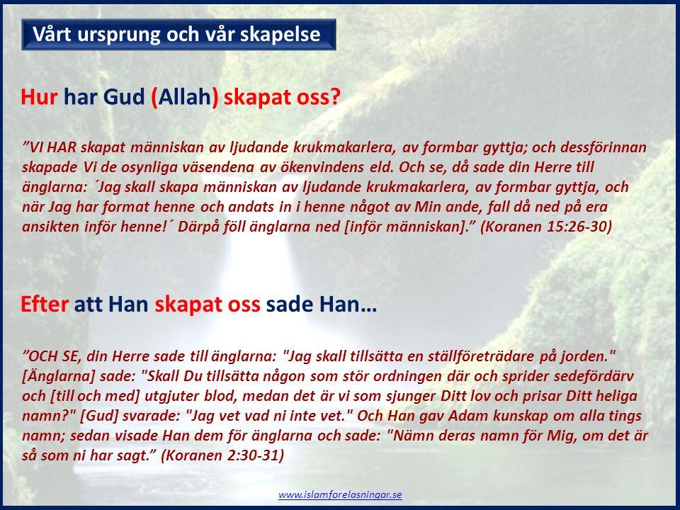 Hur har Gud (Allah) skapat oss