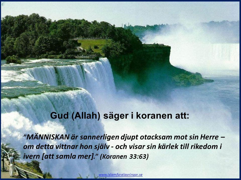 Gud (Allah) säger i koranen att: