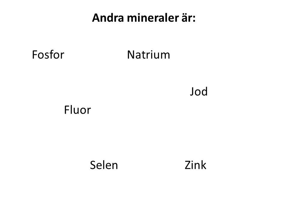 Andra mineraler är: Fosfor Natrium Jod Fluor Selen Zink