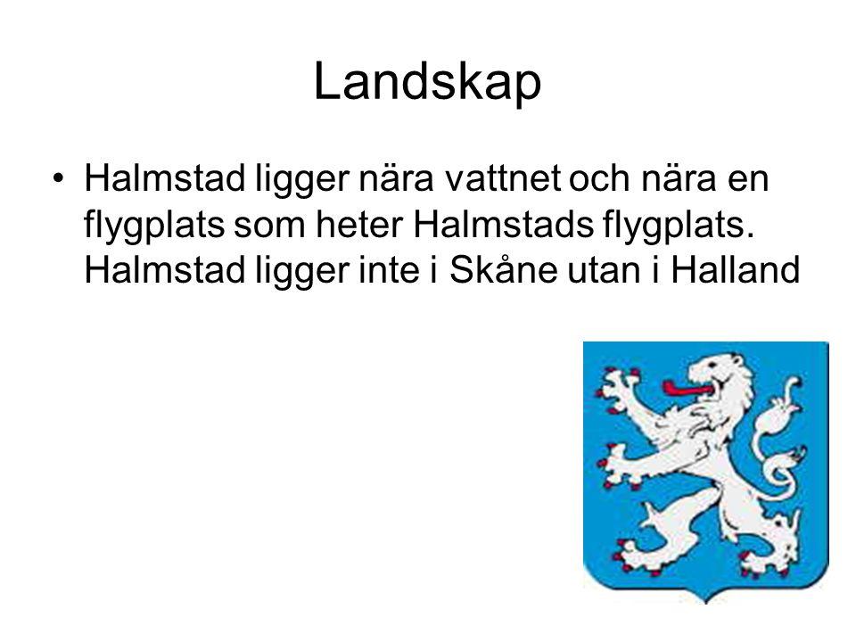 Landskap Halmstad ligger nära vattnet och nära en flygplats som heter Halmstads flygplats.