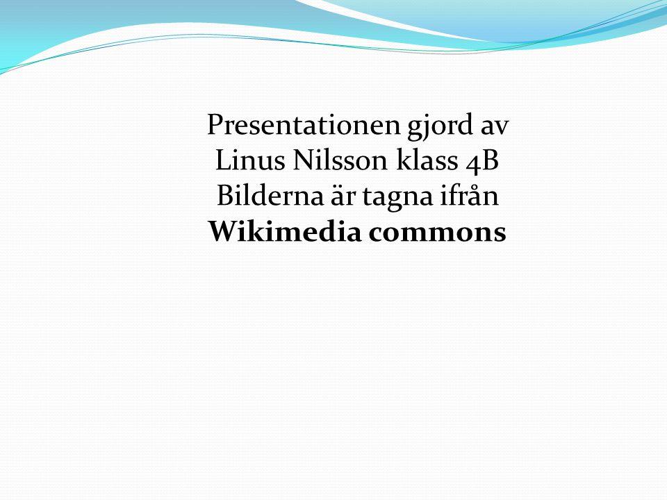 Presentationen gjord av Linus Nilsson klass 4B