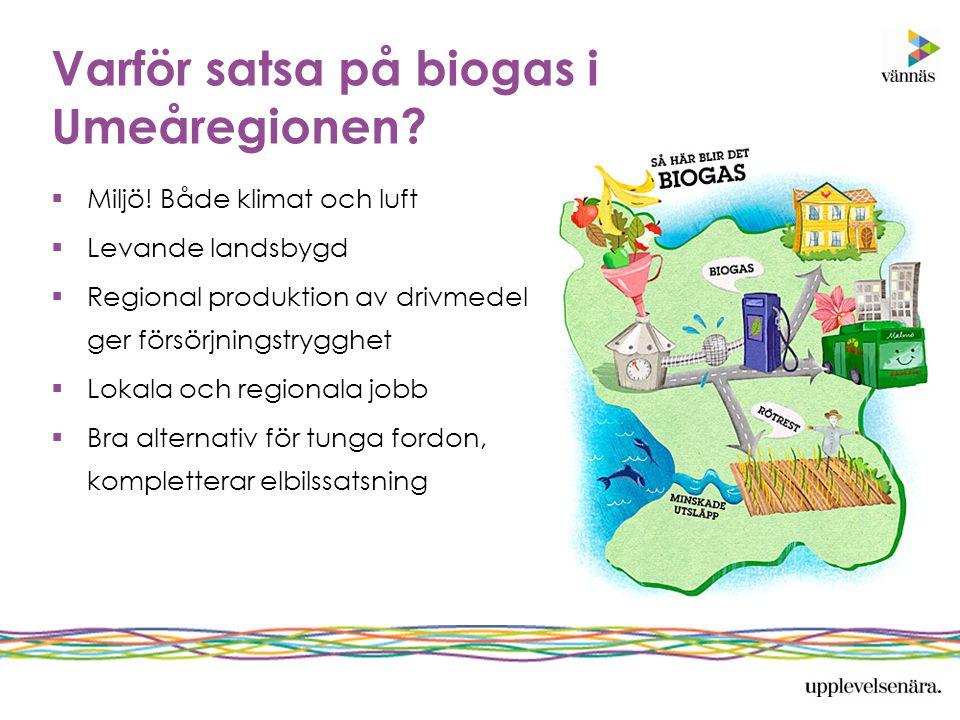 Varför satsa på biogas i Umeåregionen