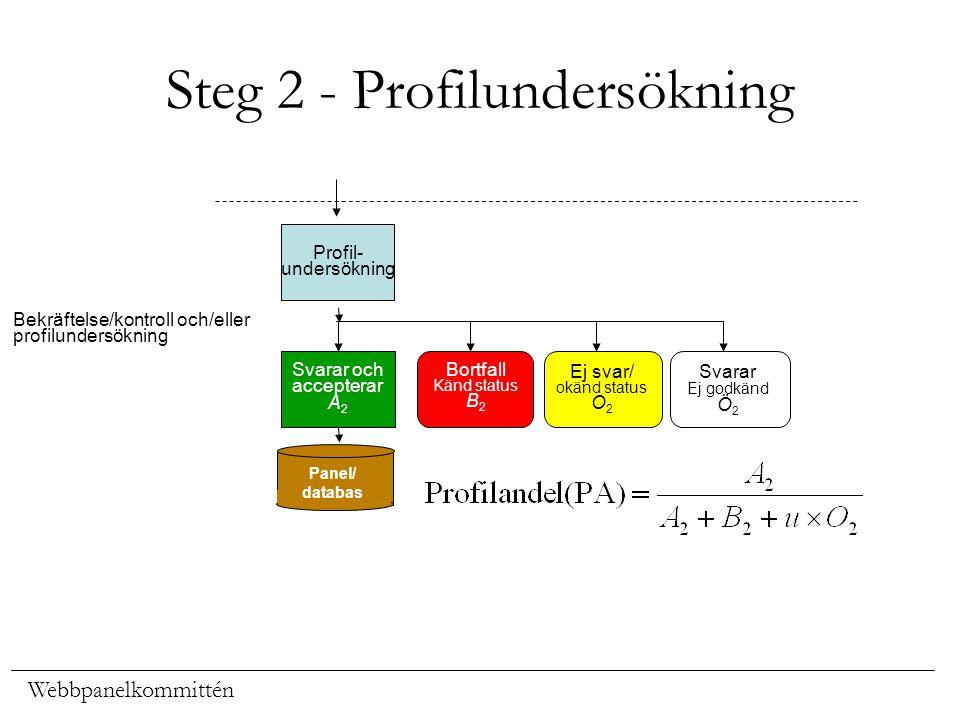 Steg 2 - Profilundersökning