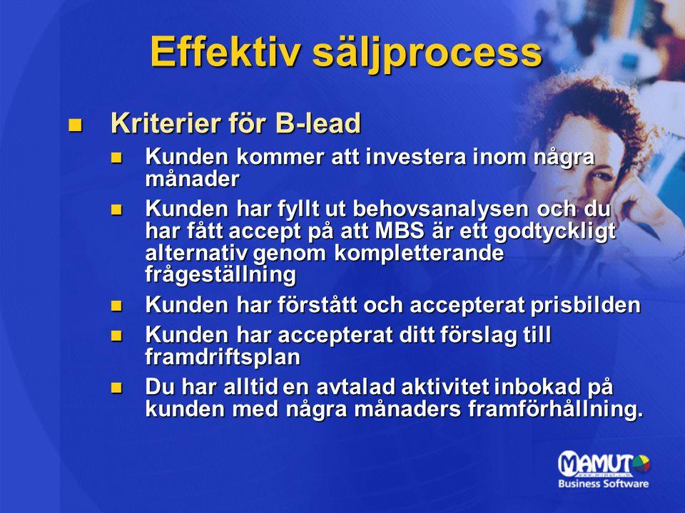 Effektiv säljprocess Kriterier för B-lead