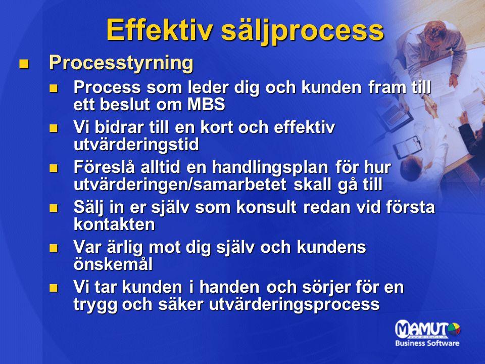 Effektiv säljprocess Processtyrning