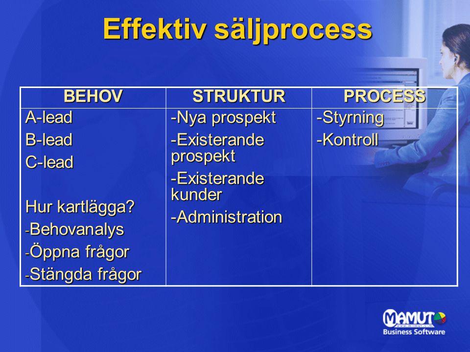 Effektiv säljprocess BEHOV STRUKTUR PROCESS A-lead B-lead C-lead