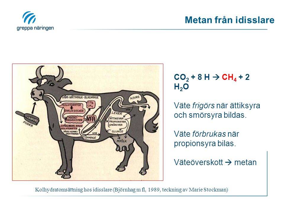 Metan från idisslare CO2 + 8 H  CH4 + 2 H2O