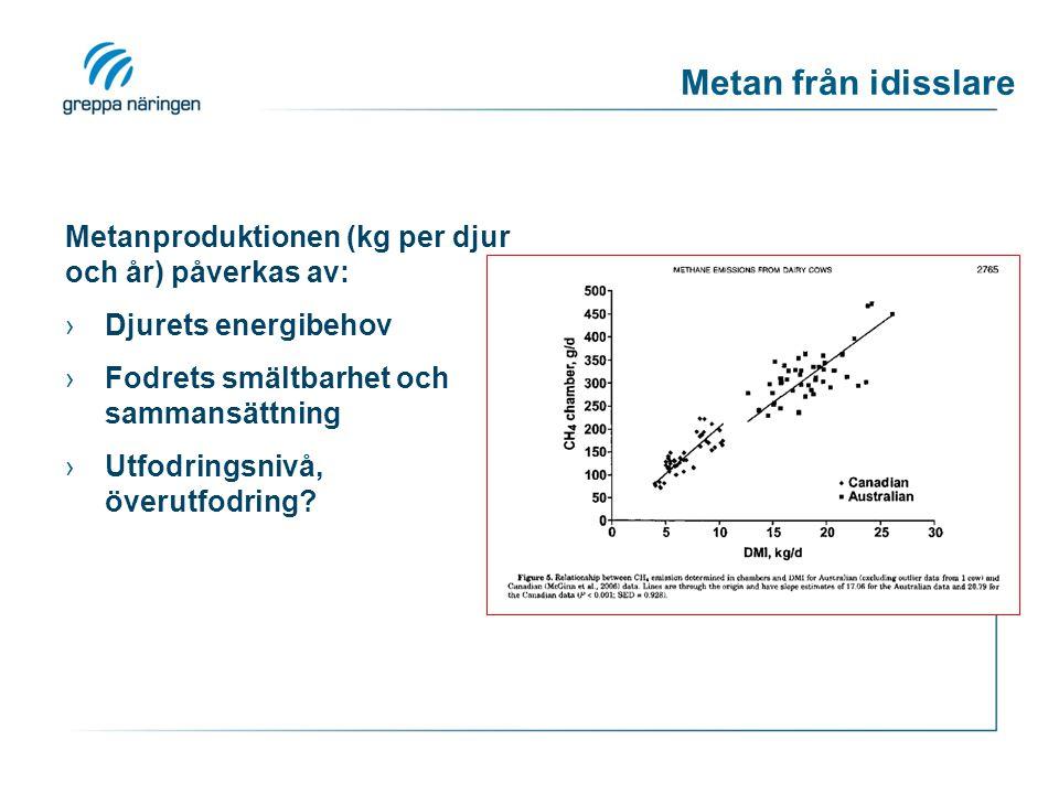 Metan från idisslare Metanproduktionen (kg per djur och år) påverkas av: Djurets energibehov. Fodrets smältbarhet och sammansättning.