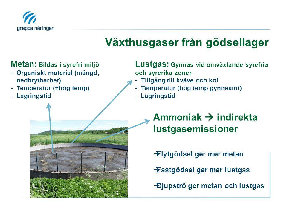 Växthusgaser från gödsellager