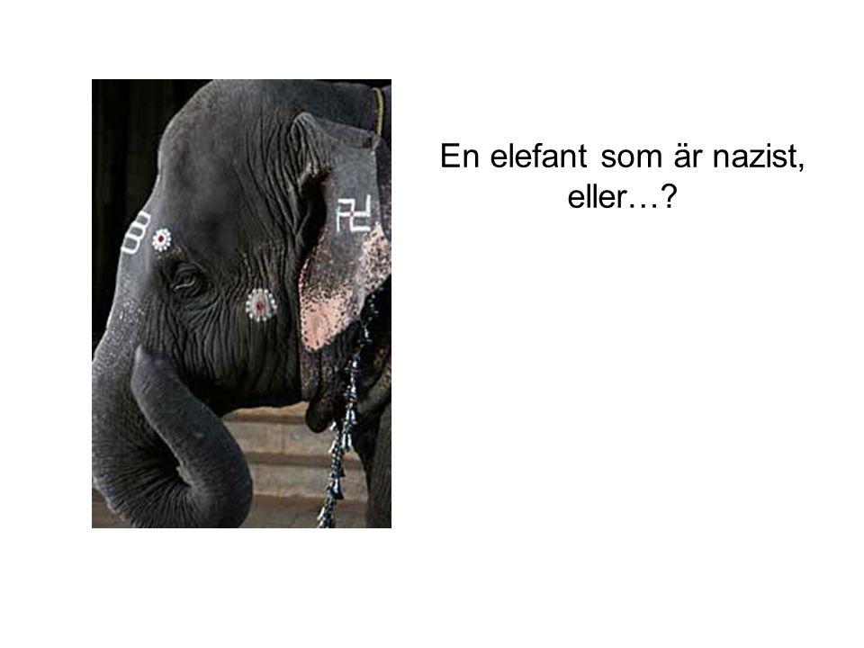 En elefant som är nazist, eller…