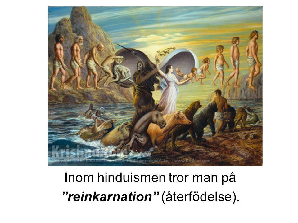 Inom hinduismen tror man på reinkarnation (återfödelse).