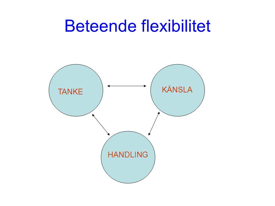 Beteende flexibilitet