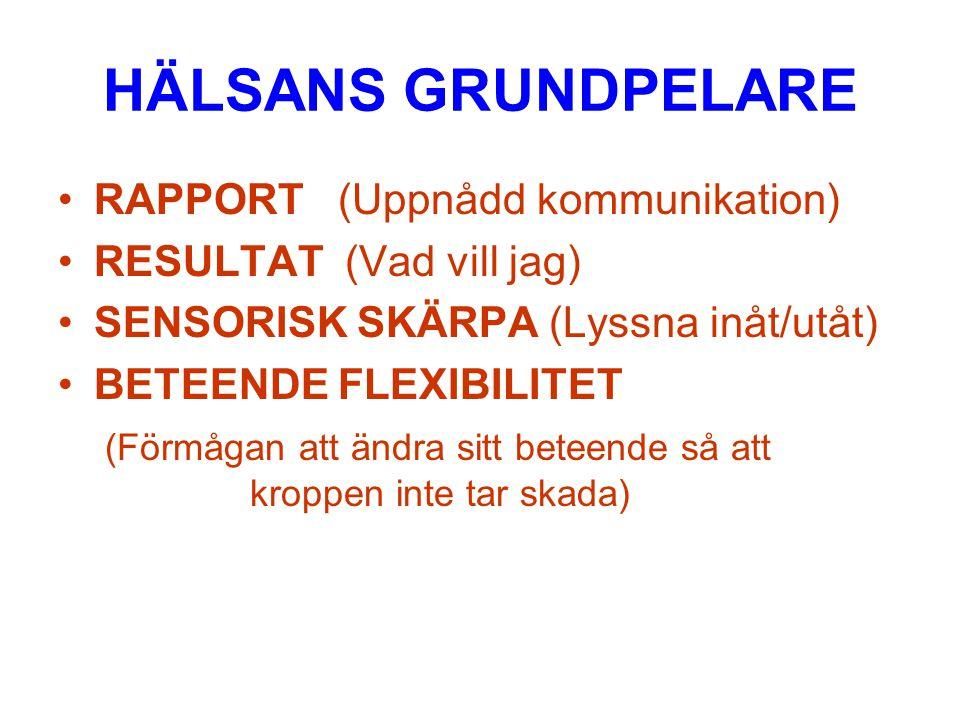 HÄLSANS GRUNDPELARE RAPPORT (Uppnådd kommunikation)