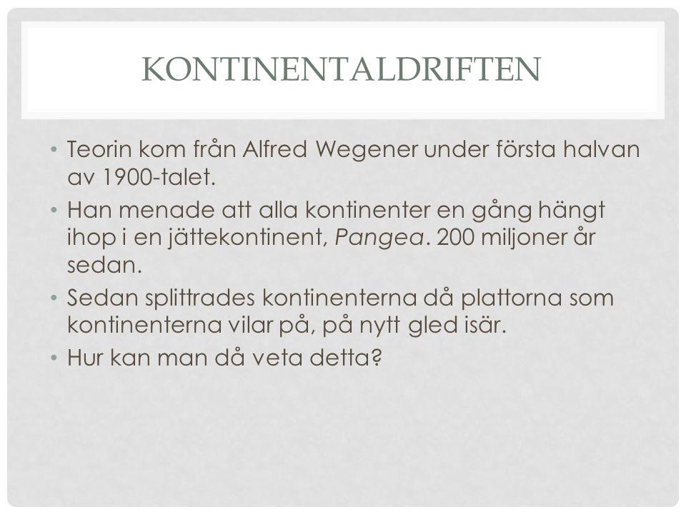 Kontinentaldriften Teorin kom från Alfred Wegener under första halvan av 1900-talet.