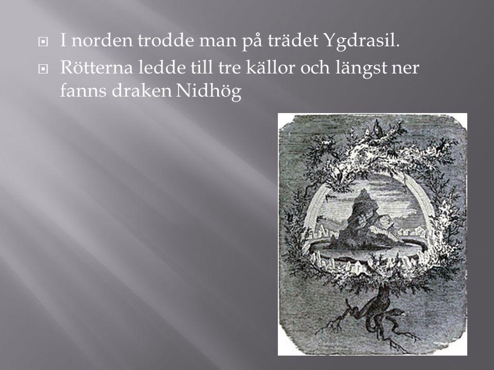 I norden trodde man på trädet Ygdrasil.