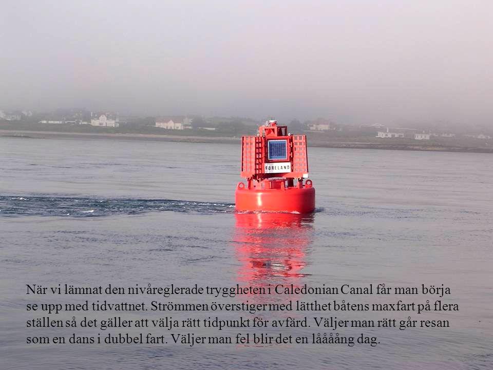 När vi lämnat den nivåreglerade tryggheten i Caledonian Canal får man börja se upp med tidvattnet.
