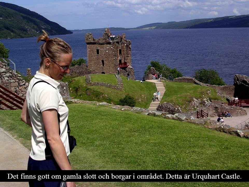 Det finns gott om gamla slott och borgar i området