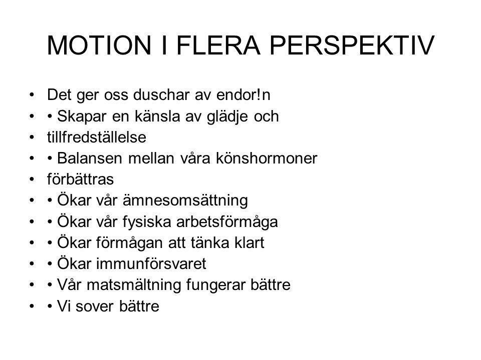 MOTION I FLERA PERSPEKTIV