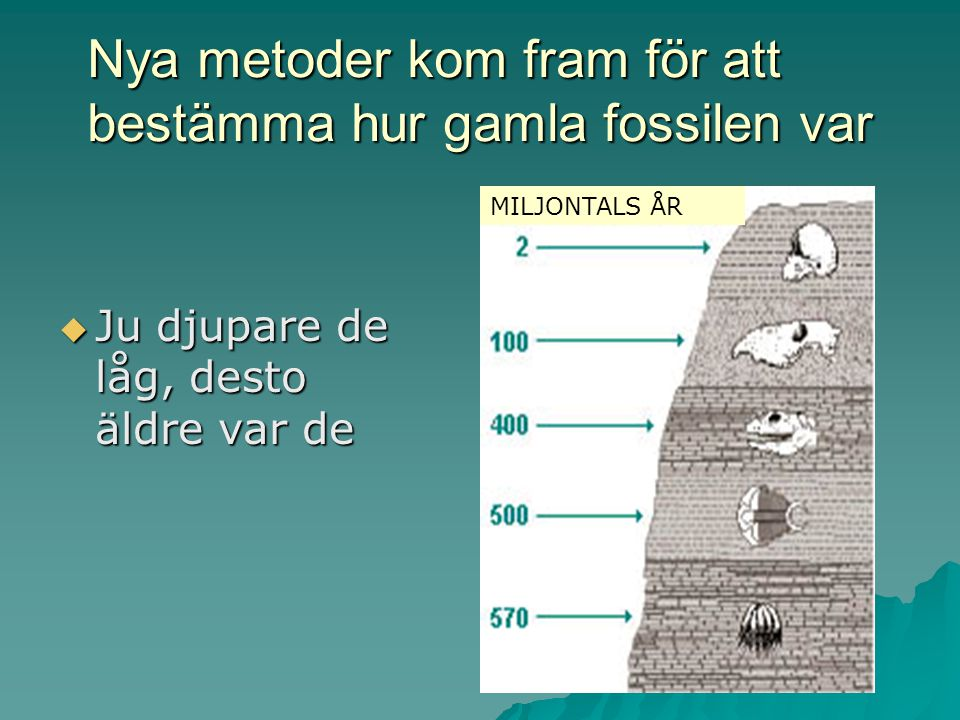 Nya metoder kom fram för att bestämma hur gamla fossilen var