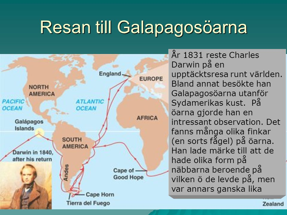 Resan till Galapagosöarna