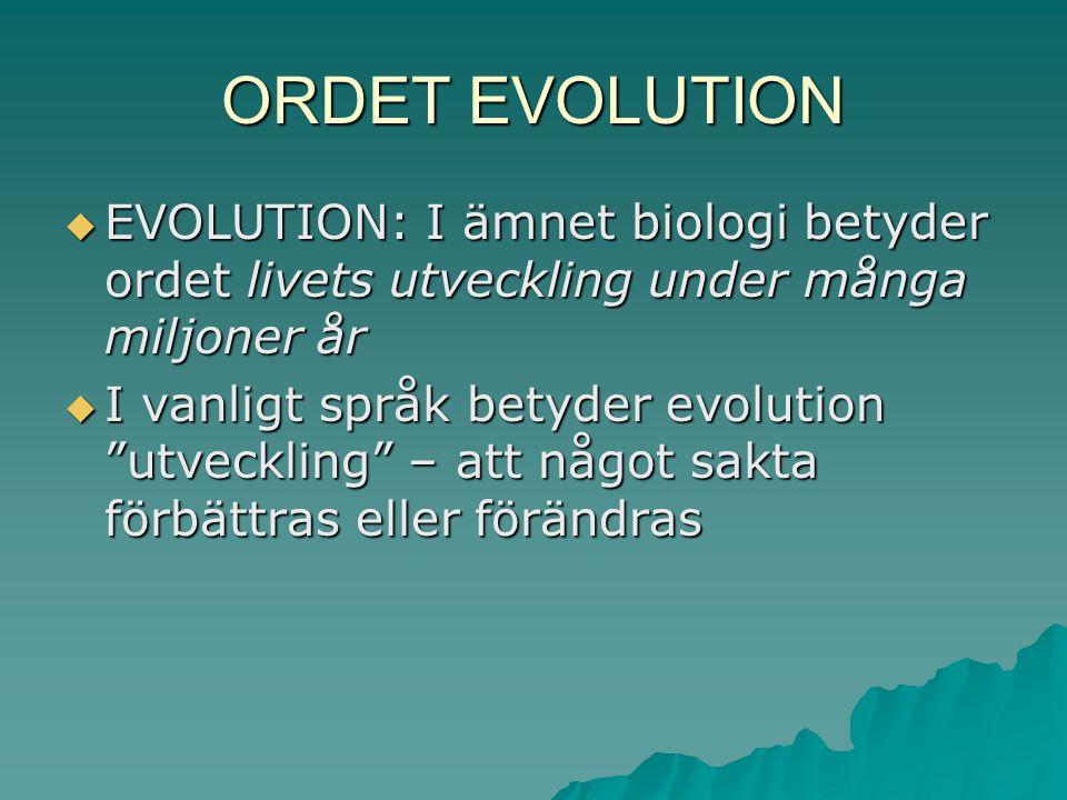 ORDET EVOLUTION EVOLUTION: I ämnet biologi betyder ordet livets utveckling under många miljoner år.
