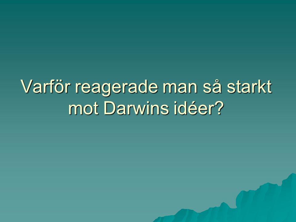 Varför reagerade man så starkt mot Darwins idéer